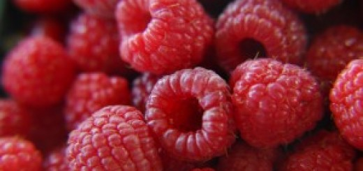 fresh_raspberries-300x200
